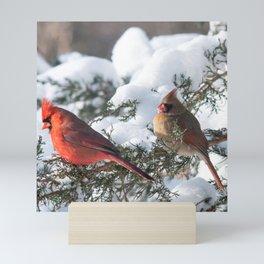 Sunny Winter Cardinals (square) Mini Art Print