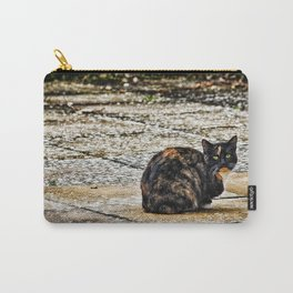 Tortoiseshell Cat Carry-All Pouch