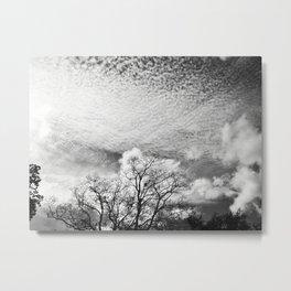318 | austin Metal Print