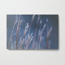 Meadow Findings Metal Print