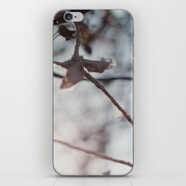 hanging iPhone Skin