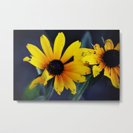 Imperfect Beauty Metal Print