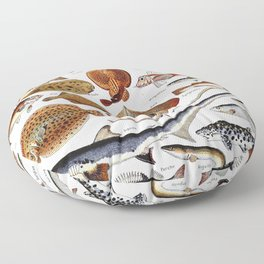 Adolphe Millot - Poissons B - French vintage nautical poster Floor Pillow