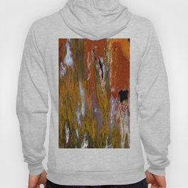 Cady Mountain Tube Agate Hoody