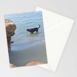 Dog on the beach Stationery Cards