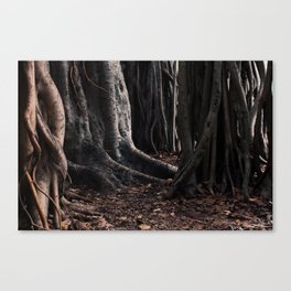 Spooky Winter Trees Canvas Print