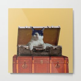 Back and white Cat in old suitcase Metal Print