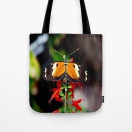Tiger Longwing Butterfly Tote Bag
