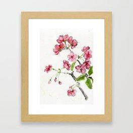 La Fleur de Malus Framed Art Print