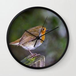 Perched. Wall Clock