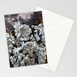 Smattering of Lichens Stationery Cards