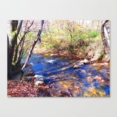 Skip Creek Canvas Print