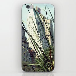 Central Park View iPhone Skin