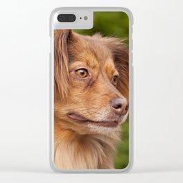A cute brown dog portrait Clear iPhone Case