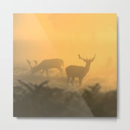 In the Clear Metal Print