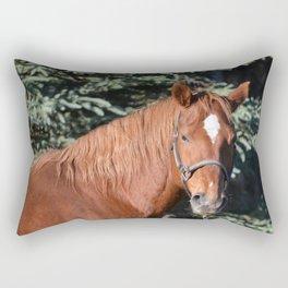 Miss Sadie - A horse, of course Rectangular Pillow