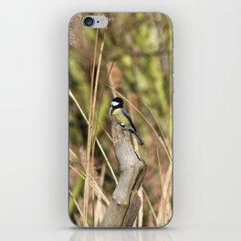 Great Tit iPhone Skin