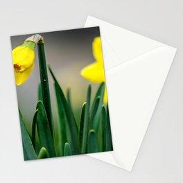 Gelbe Osterglocken Knospe Stationery Cards