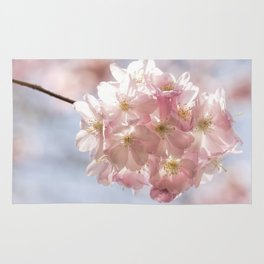 Branch of Cherry Blossom - Pink flowers Rug