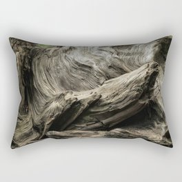 Etched by Nature Scarred by Man Rectangular Pillow