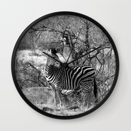 Are you black with white stripes? Wall Clock