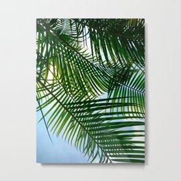 Color of Tropicle Metal Print