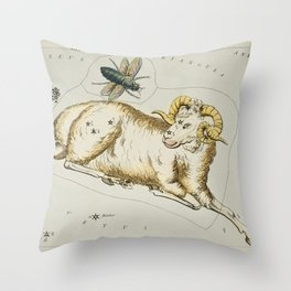 Sidney Halls (1831) astronomical chart  of Aries and Musca Borealis Throw Pillow