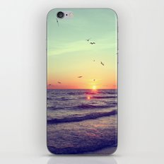 Siesta Key Sunset iPhone Skin