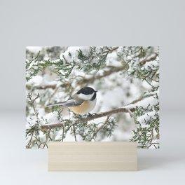 Snowstorm Chickadee Mini Art Print