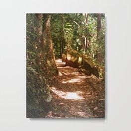 pathway to... Metal Print