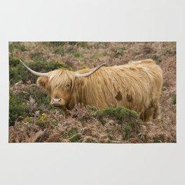 Highland Lad Rug