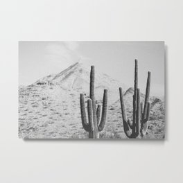 DESERT XIV / Arizona Metal Print