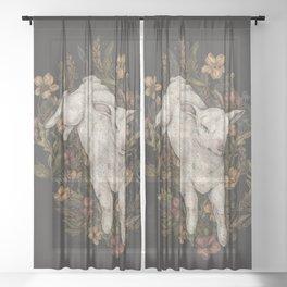 Lamb Sheer Curtain