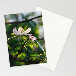 Flowers: I // Oregon Stationery Cards