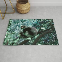 Black and White Ruffed Lemur in Turquoise Rug