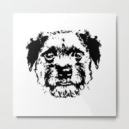 BORDER TERRIER DOG Metal Print