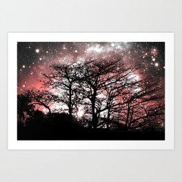 Black Trees coral Space Art Print