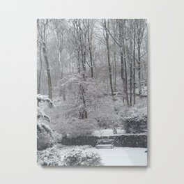 Maplewood - South Mountain Reservation - Snow Metal Print