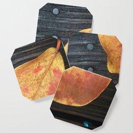 One Fallen Leaf Coaster
