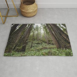 Fern Alley - Redwood Forest Nature Photography Rug