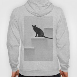 Black cat on steps Hoody