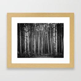 Deep Woods Framed Art Print