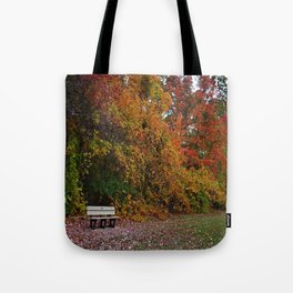 This Fragile Life Tote Bag