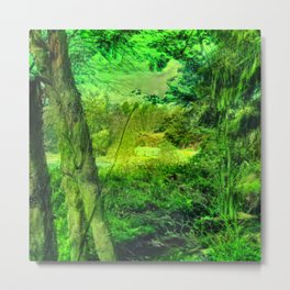 Temperate Jungle Home Metal Print