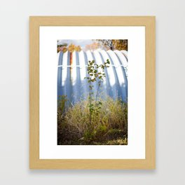 HOME: EARLY OCTOBER, ONE  Framed Art Print