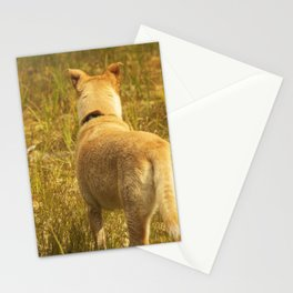 What does Maisie see? Stationery Cards