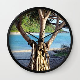 Looking through the Pandanus Wall Clock