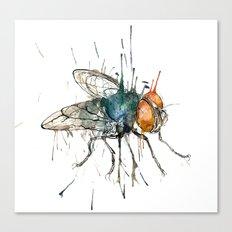I said the fly Canvas Print