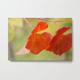 Fall... in love Metal Print