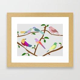 Birds on a tree Framed Art Print